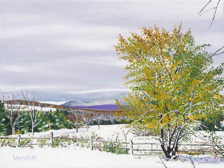 Apple Tree In Snow, 12x16
