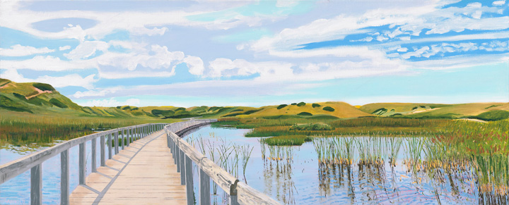 Boardwalk Over Tidal Marsh