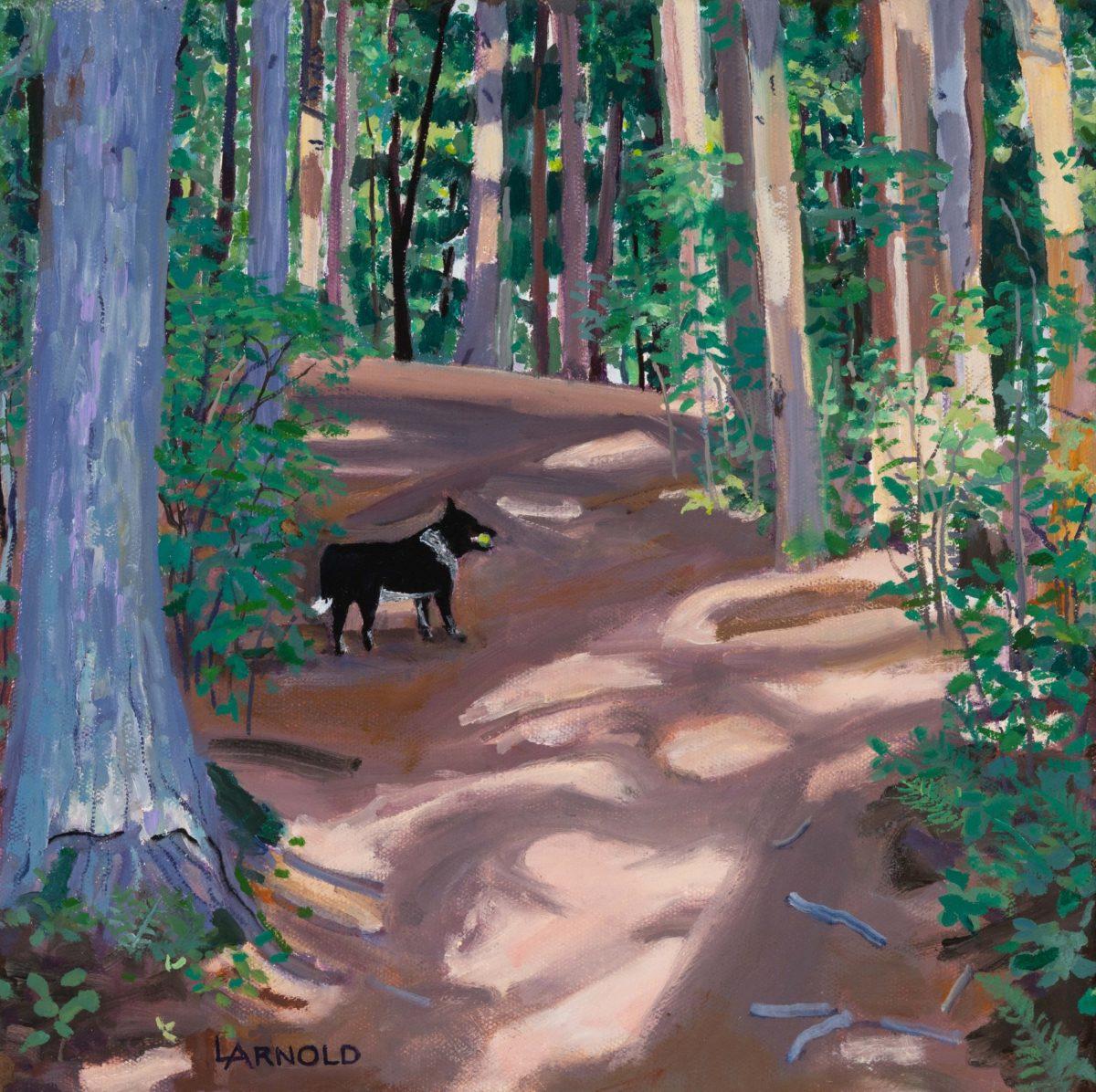 Fergus On Woods Walk, 12″ X 12″