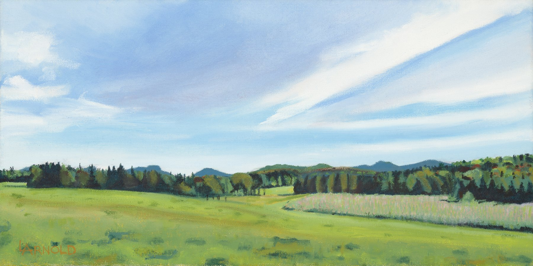 Laggis Farm Pasture, 8x16