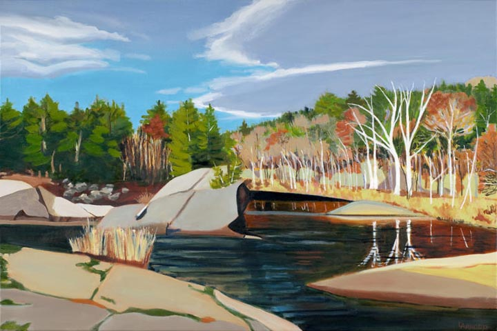Lamoille River At Ithiel Falls II