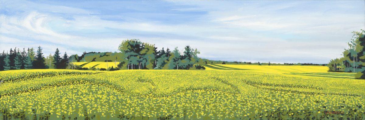 Mustard Field PEI
