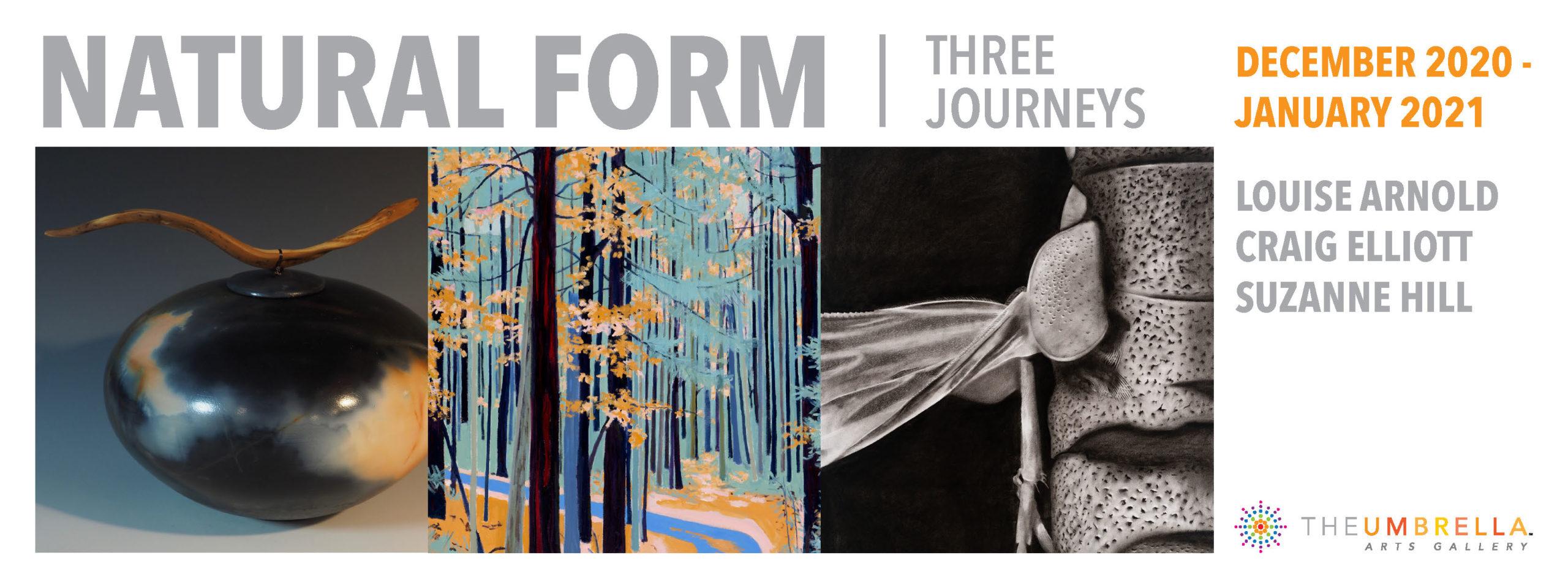 Natural Form: Three Journeys; Umbrella Center For The Arts, Concord, MA