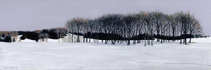 Perron Field, Winter