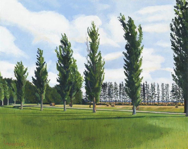 Poplar Allee PEI, 16x20
